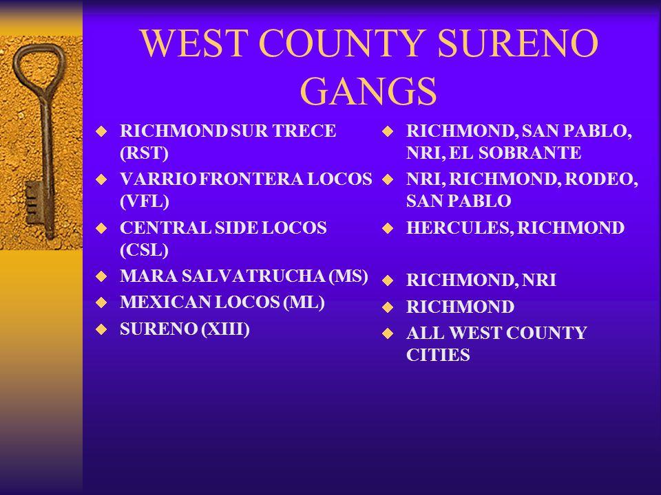 NORTENO 14  HISPANIC GANG WHICH ORIGINATED IN THE CLAIFORNIA PRISON SYSTEM  NORTHERN CALIFORNIA HISPANICS  TITLES: 14, NUESTRA FAMILIA, NORTE, XIV, X4  CLAIM COLOR RED