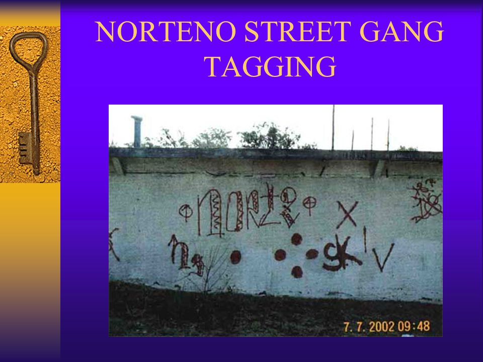 WEST COUNTY NORTENO GANGS  LA NUESTRA FAMILIA (NF)  MONTALVIN NORTENOS (MTN)  VARRIO SAN PABLO (VSP)  NORTENO (XIV)  SAN PABLO  SAN PABLO, RICHMOND, EL SOBRANTE  ALL WEST COUNTY CITIES