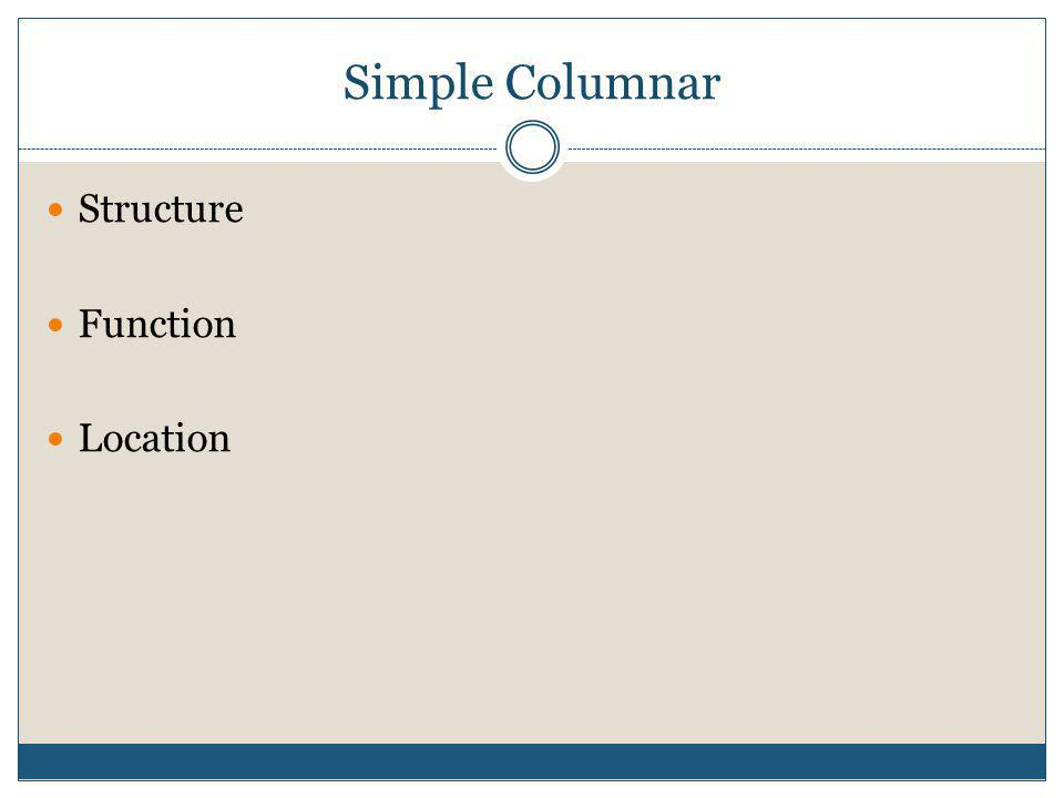 Simple Columnar Structure Function Location