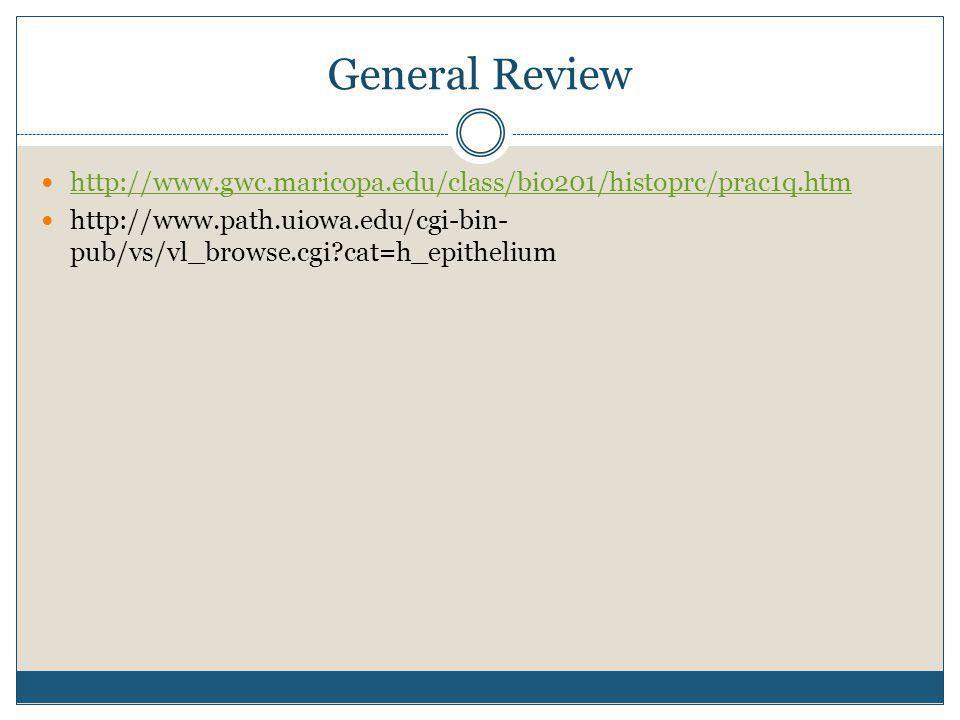 General Review http://www.gwc.maricopa.edu/class/bio201/histoprc/prac1q.htm http://www.path.uiowa.edu/cgi-bin- pub/vs/vl_browse.cgi?cat=h_epithelium
