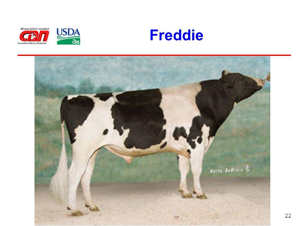 22 Freddie