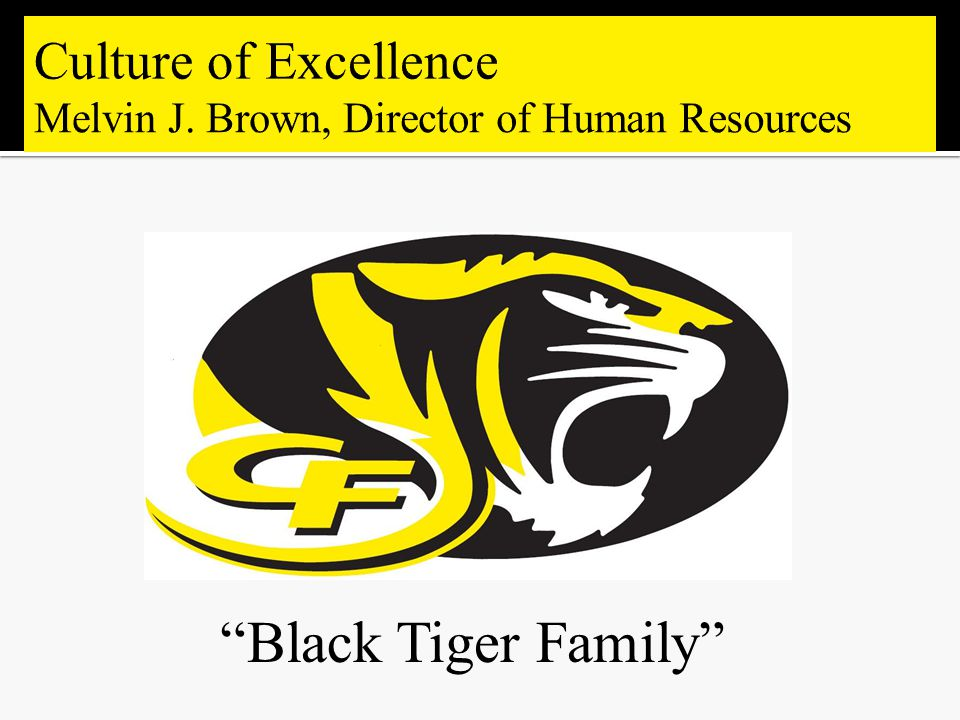 Black Tiger Family