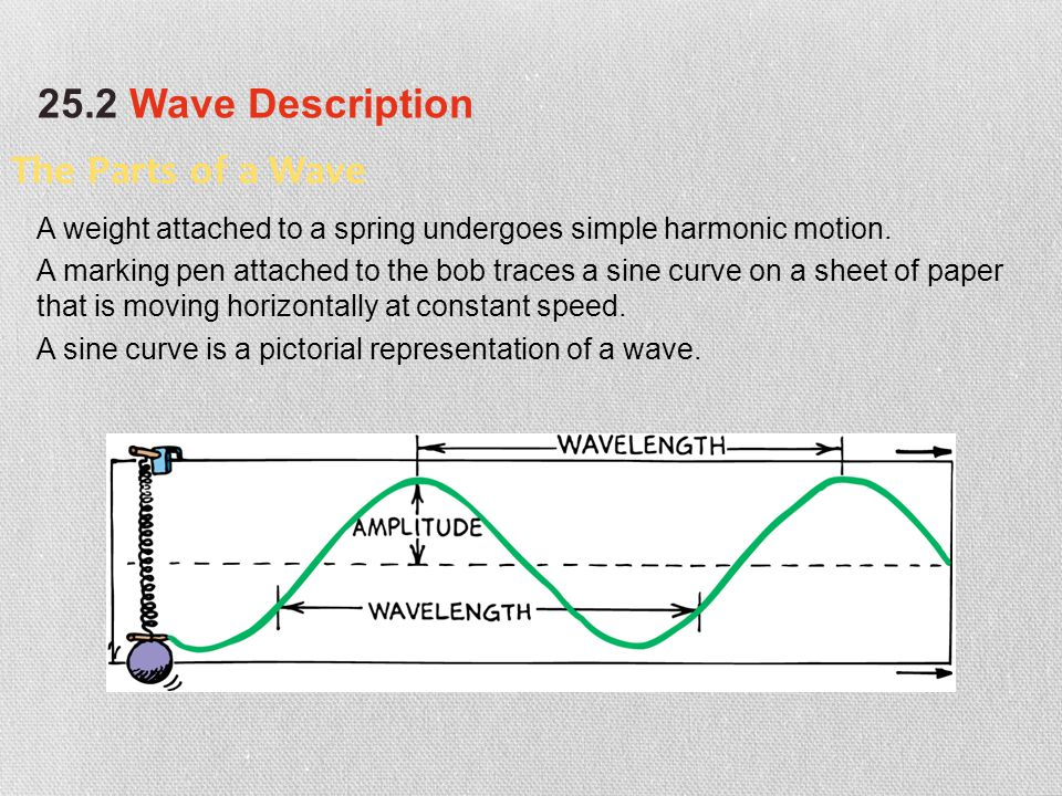 The Parts of a Wave A weight attached to a spring undergoes simple harmonic motion. A marking pen attached to the bob traces a sine curve on a sheet o