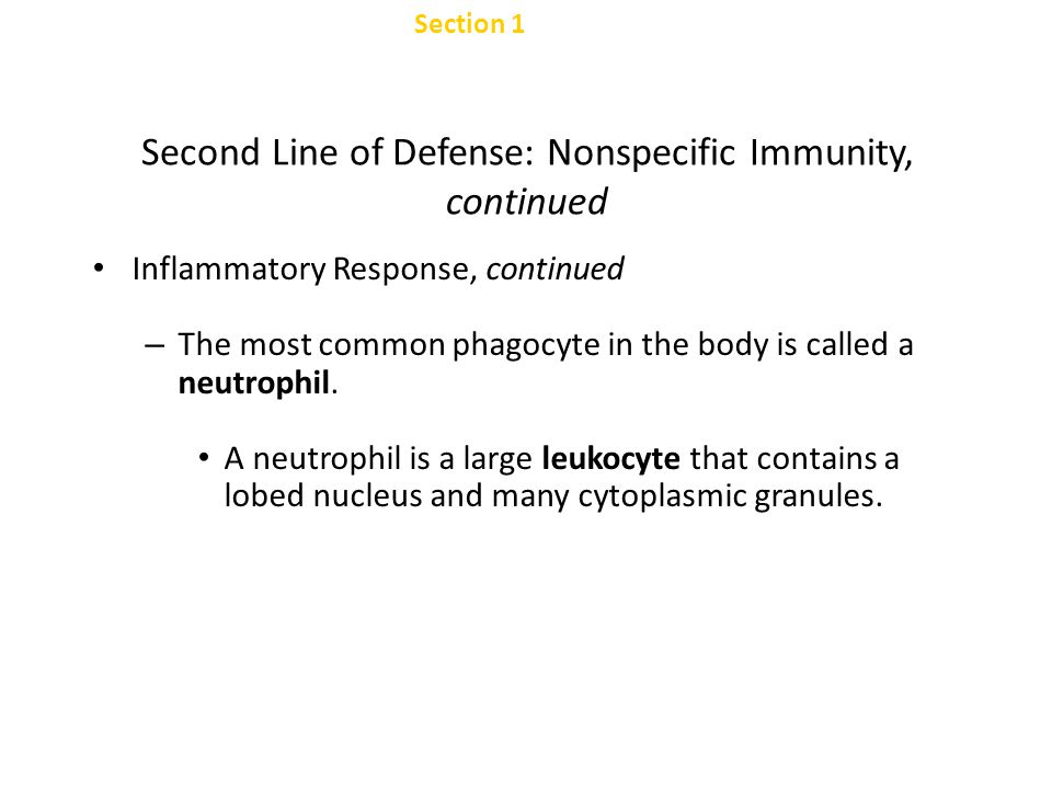 Section 1 Nonspecific Defenses Chapter 47 Second Line of Defense: Nonspecific Immunity, continued Inflammatory Response, continued – Fluids and white