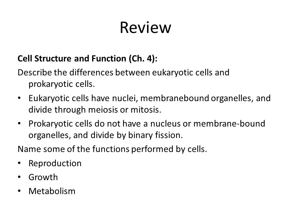 Review Cell Structure and Function (Ch.