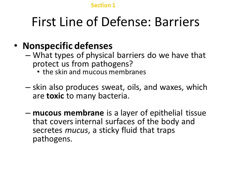 Section 2 Specific Defense: The Immune System Chapter 47 Immune Response, continued Cell-Mediated Immune Response, continued – Also produced during the cell-mediated immune response is a type of T cell called the suppressor T cell.