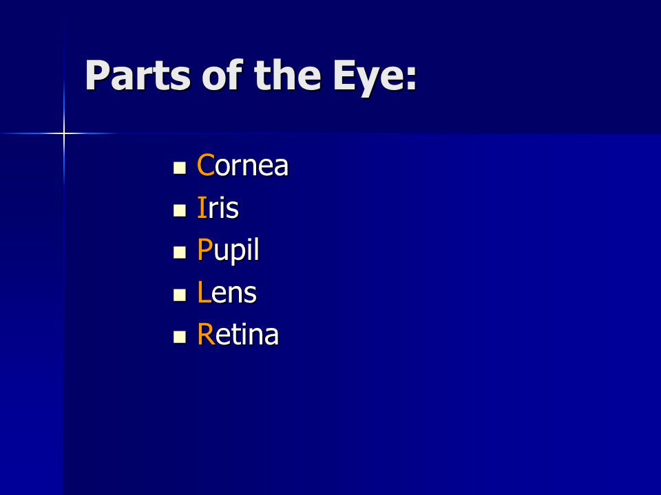 Cornea- the outer, transparent dome- like structure that transmits and refracts light to the pupil.