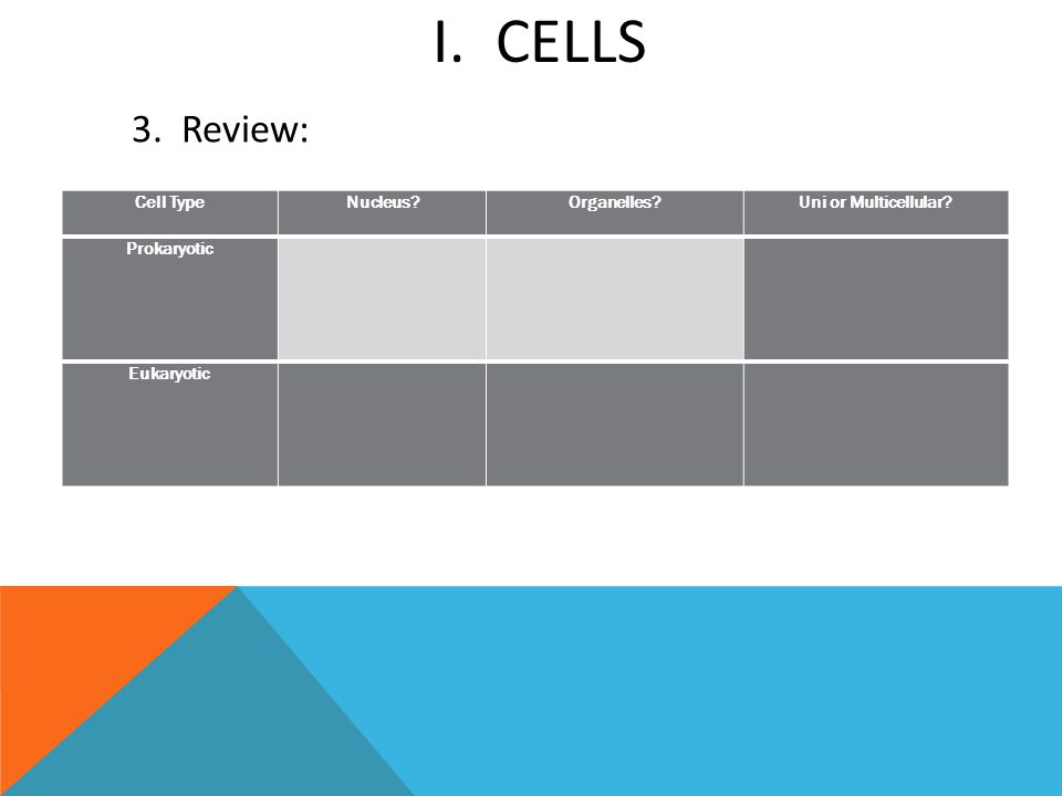 I. CELLS Cell TypeNucleus?Organelles?Uni or Multicellular? Prokaryotic Eukaryotic 3. Review: