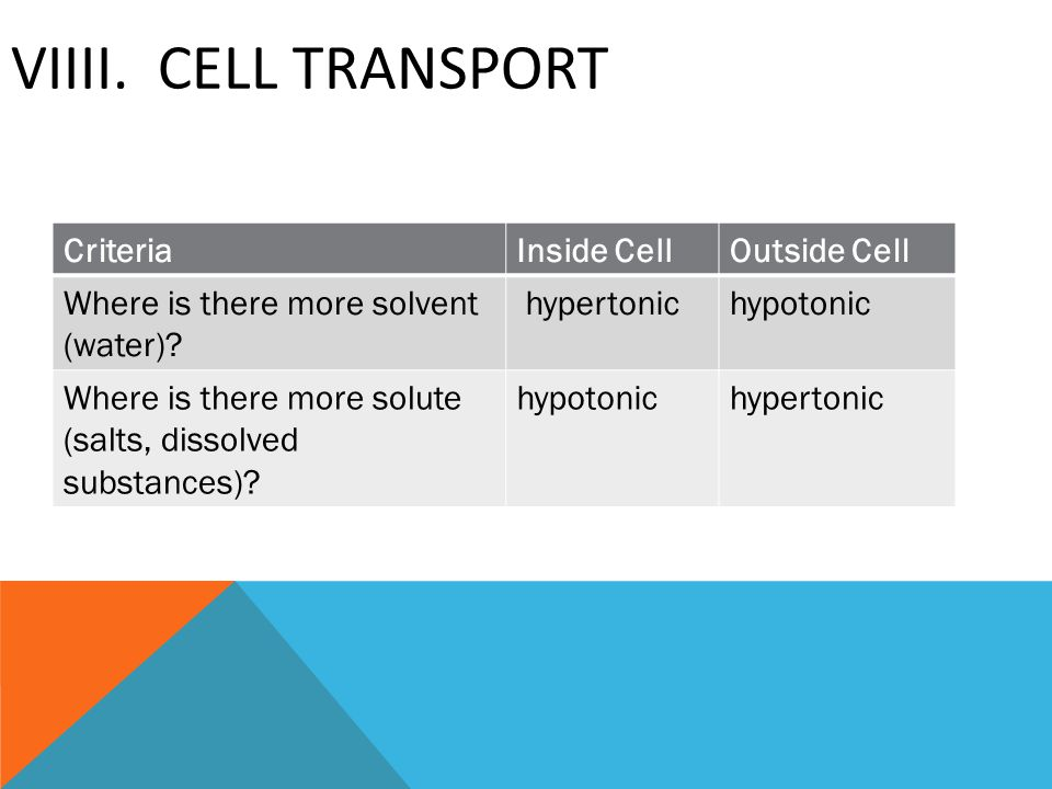 VIIII. CELL TRANSPORT CriteriaInside CellOutside Cell Where is there more solvent (water)? hypertonichypotonic Where is there more solute (salts, diss