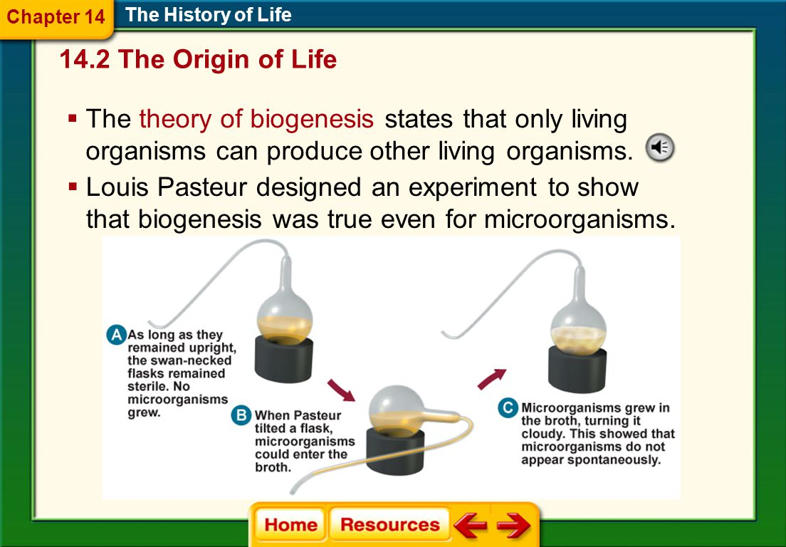 14.2 The Origin of Life Origins: Early Ideas The History of Life  Spontaneous generation is the idea that life arises from nonlife.  Francesco Redi,