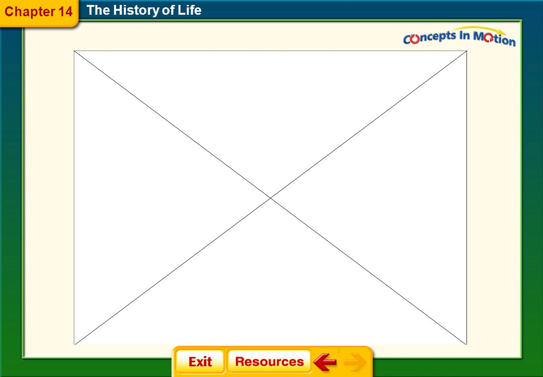 The History of Life Chapter 14 Animation  Visualizing Geologic Time Visualizing Geologic Time  Continental Drift Continental Drift  Miller-Urey Exp