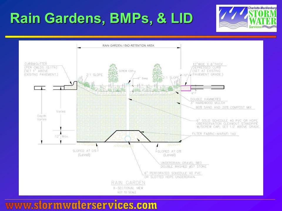 Rain Gardens, BMPs, & LID