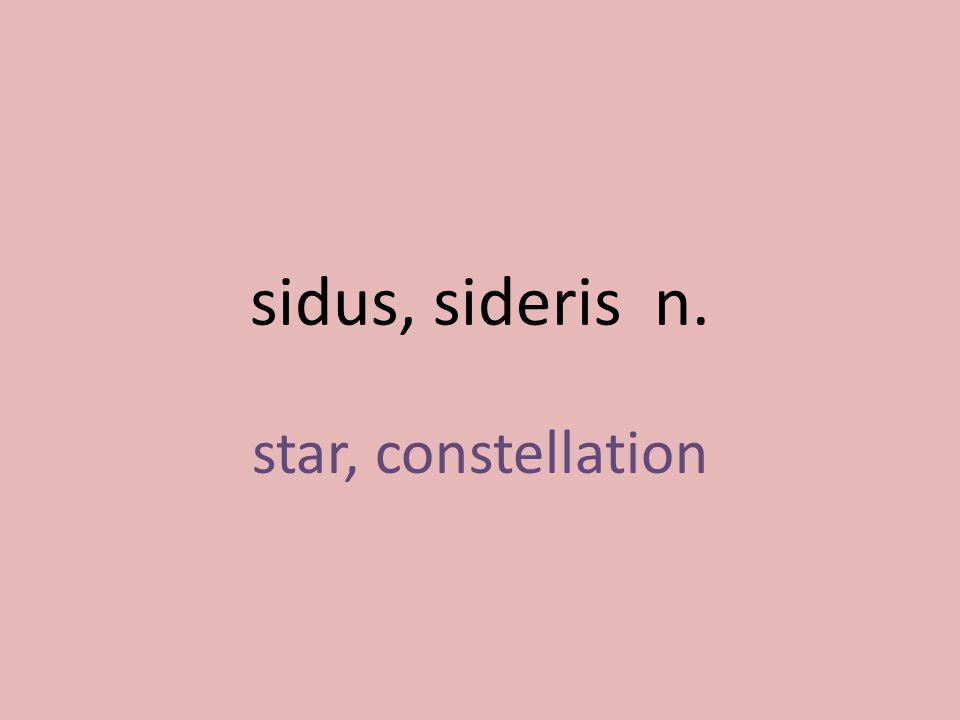 star, constellation