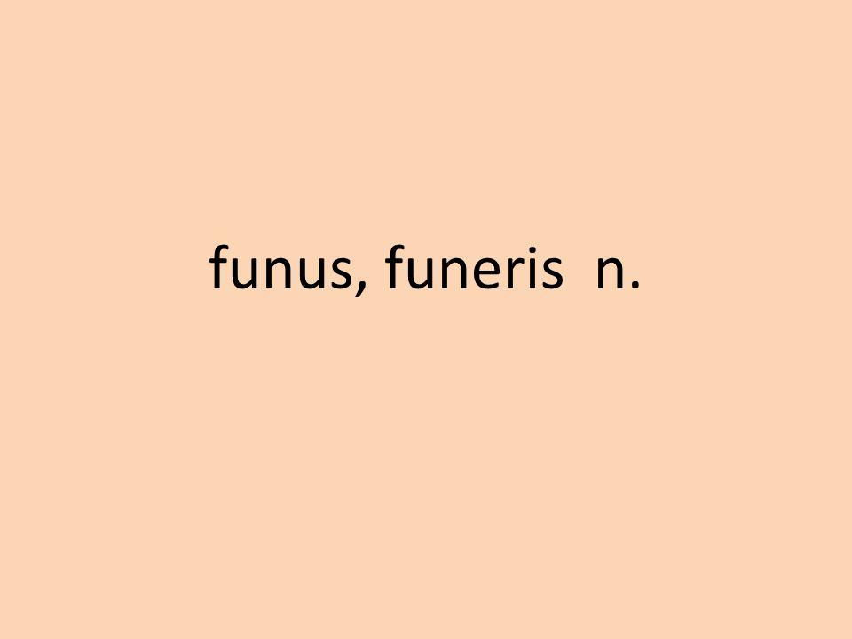funus, funeris n.