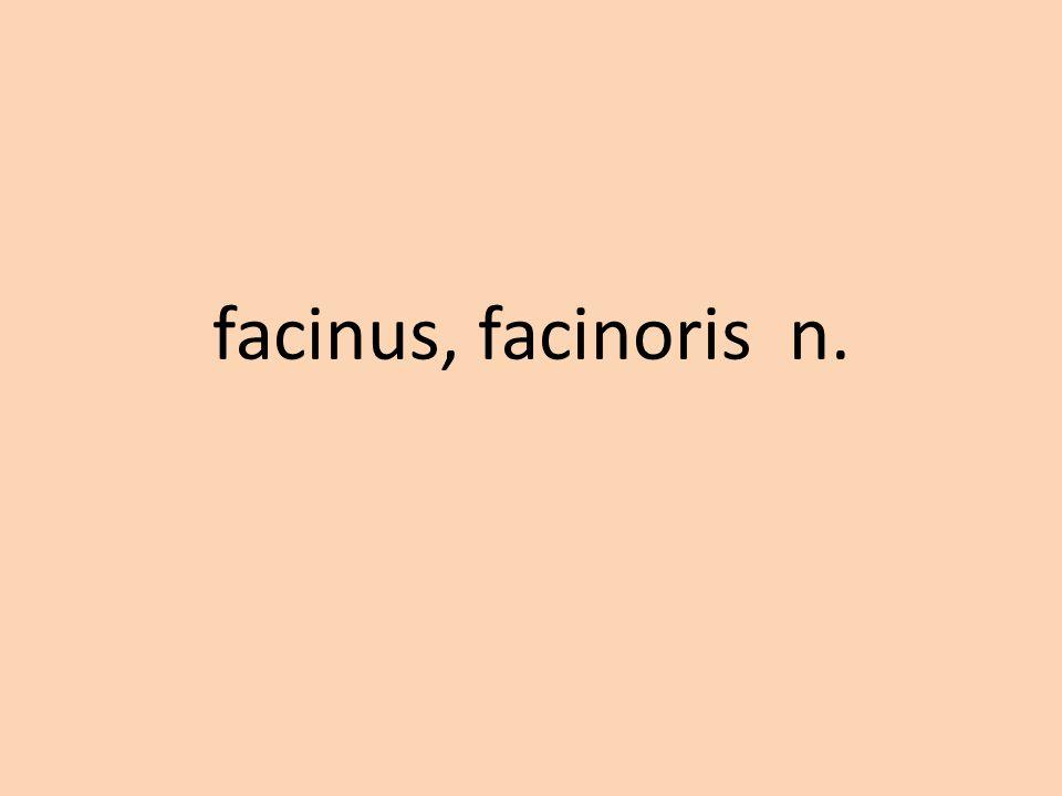 facinus, facinoris n.