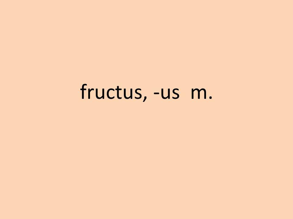 fructus, -us m.