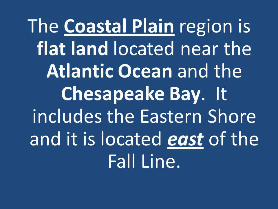 The Coastal Plain region is flat land located near the Atlantic Ocean and the Chesapeake Bay.
