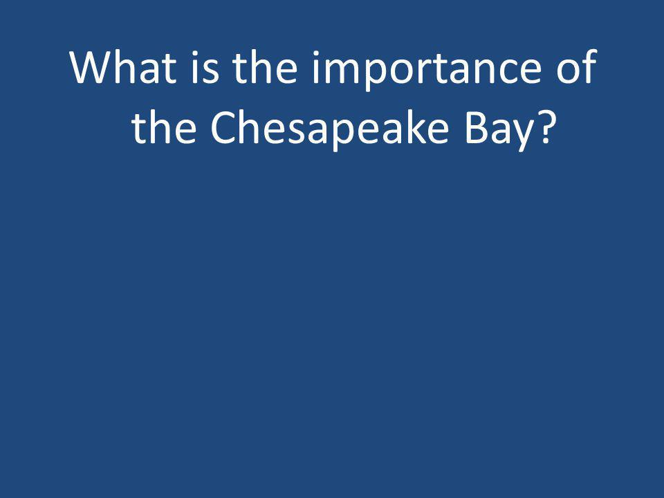 What is the importance of the Chesapeake Bay?