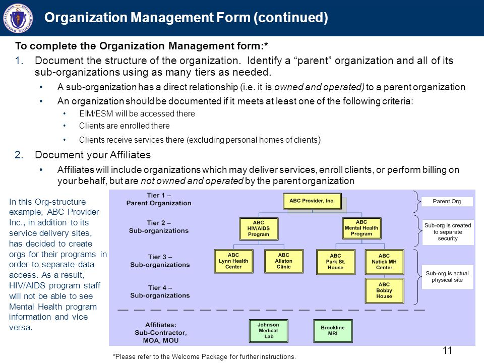"11 Organization Management Form (continued) To complete the Organization Management form:* 1.Document the structure of the organization. Identify a ""p"