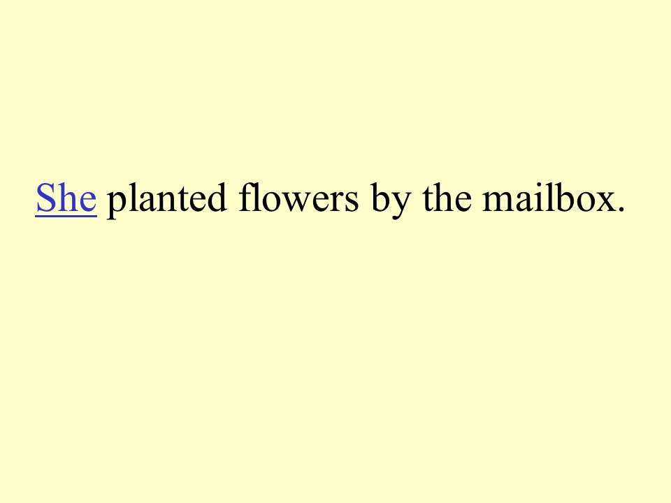 Tell the pronoun to take the place of the underline words. Mom planted flowers by the mailbox.