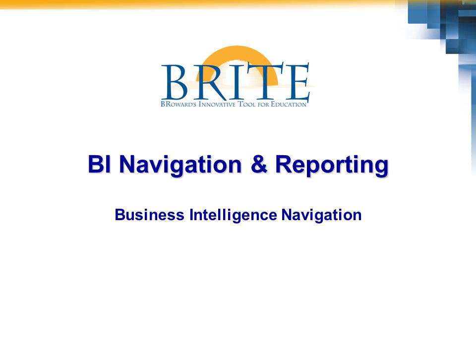 2BI Navigation & Reporting Course Objectives At the end of this course you should be able to:  Log on to the BRITE Portal –Access Reports via the BRITE Portal  Navigate your way through typical Reports –Financial Reports –Operations Reports
