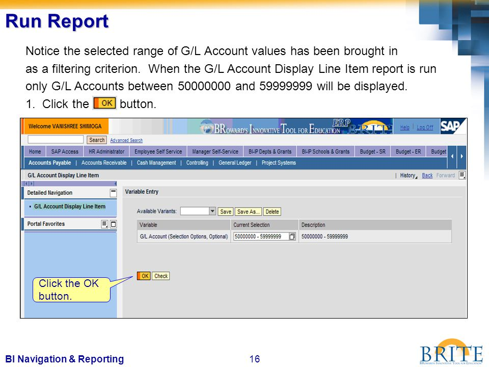 16BI Navigation & Reporting Run Report Notice the selected range of G/L Account values has been brought in as a filtering criterion.