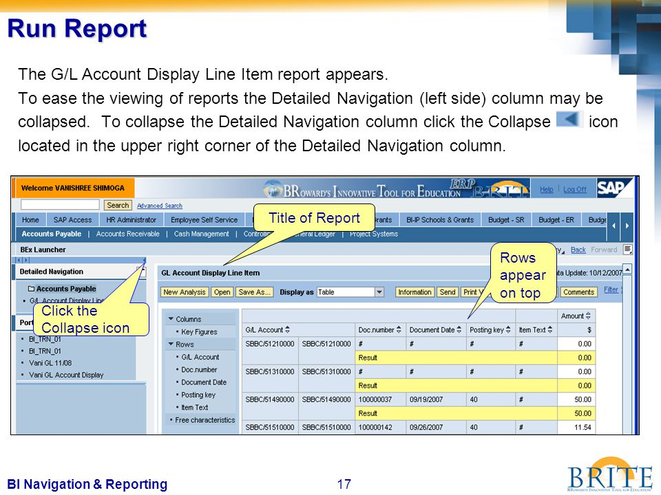 17BI Navigation & Reporting The G/L Account Display Line Item report appears.
