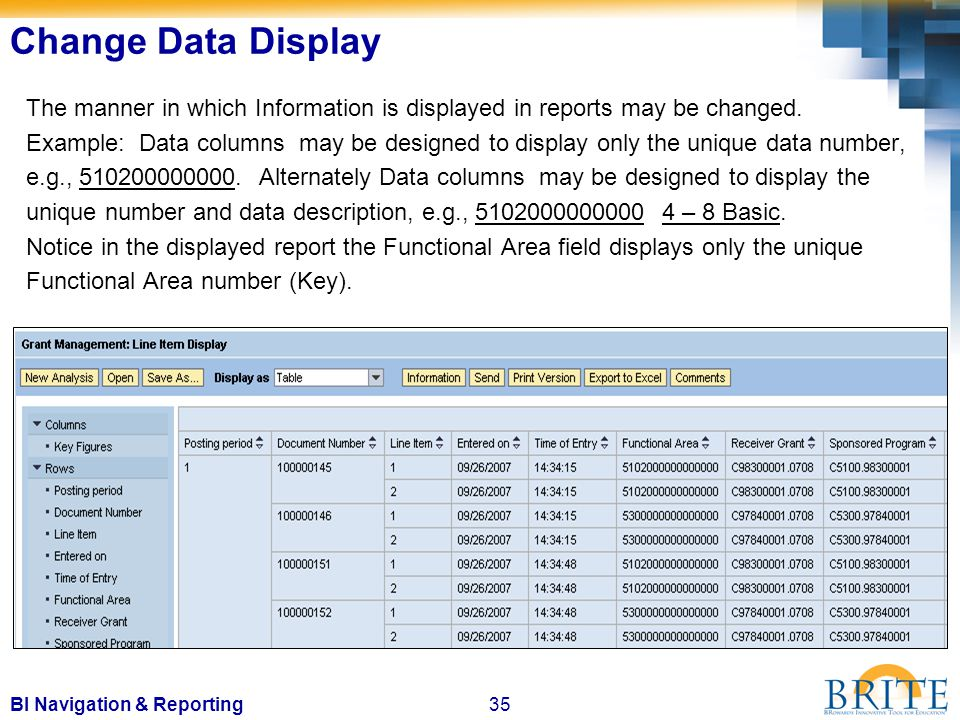 35BI Navigation & Reporting The manner in which Information is displayed in reports may be changed.
