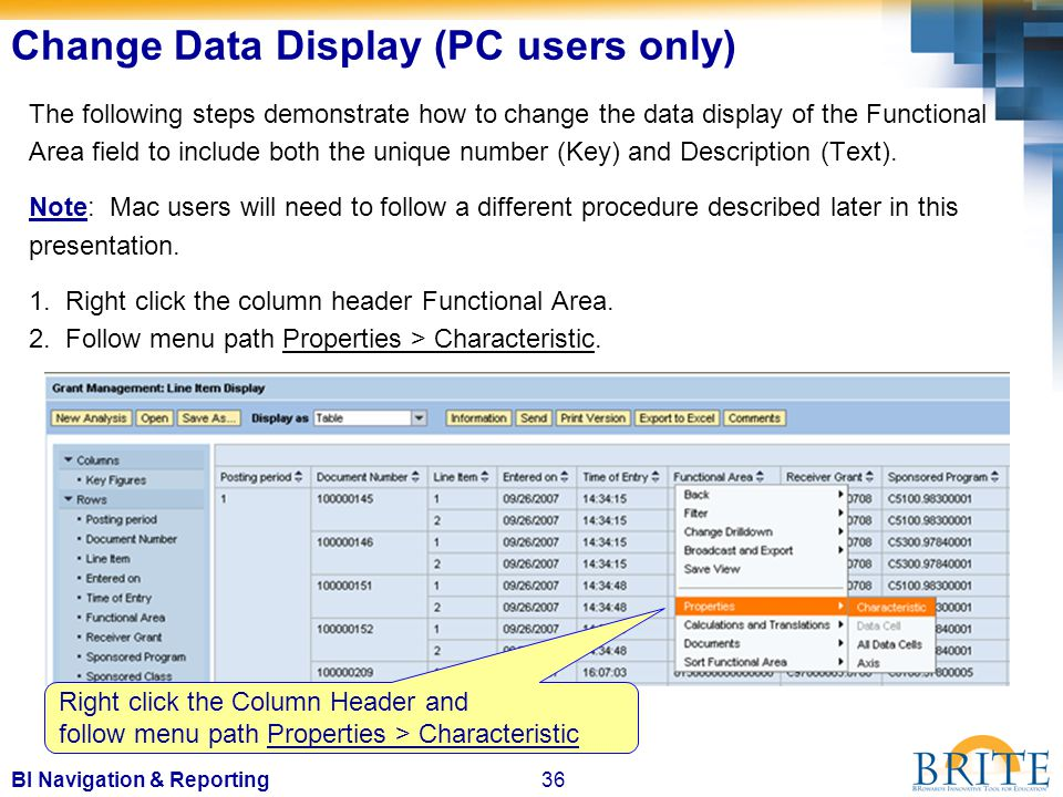 36BI Navigation & Reporting The following steps demonstrate how to change the data display of the Functional Area field to include both the unique number (Key) and Description (Text).