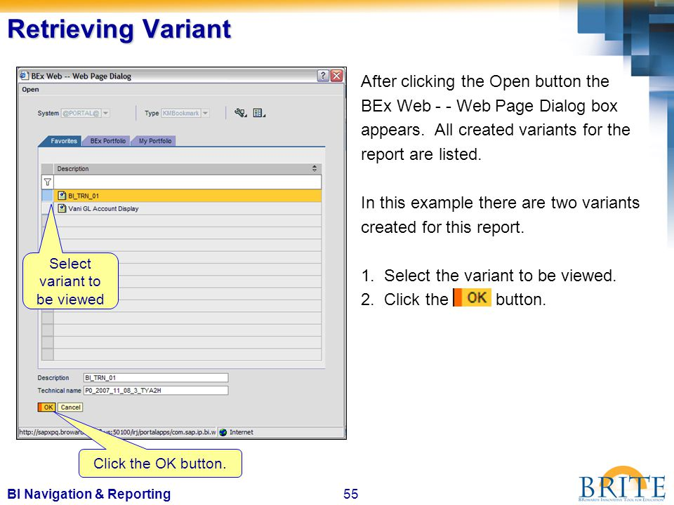 55BI Navigation & Reporting After clicking the Open button the BEx Web - - Web Page Dialog box appears.
