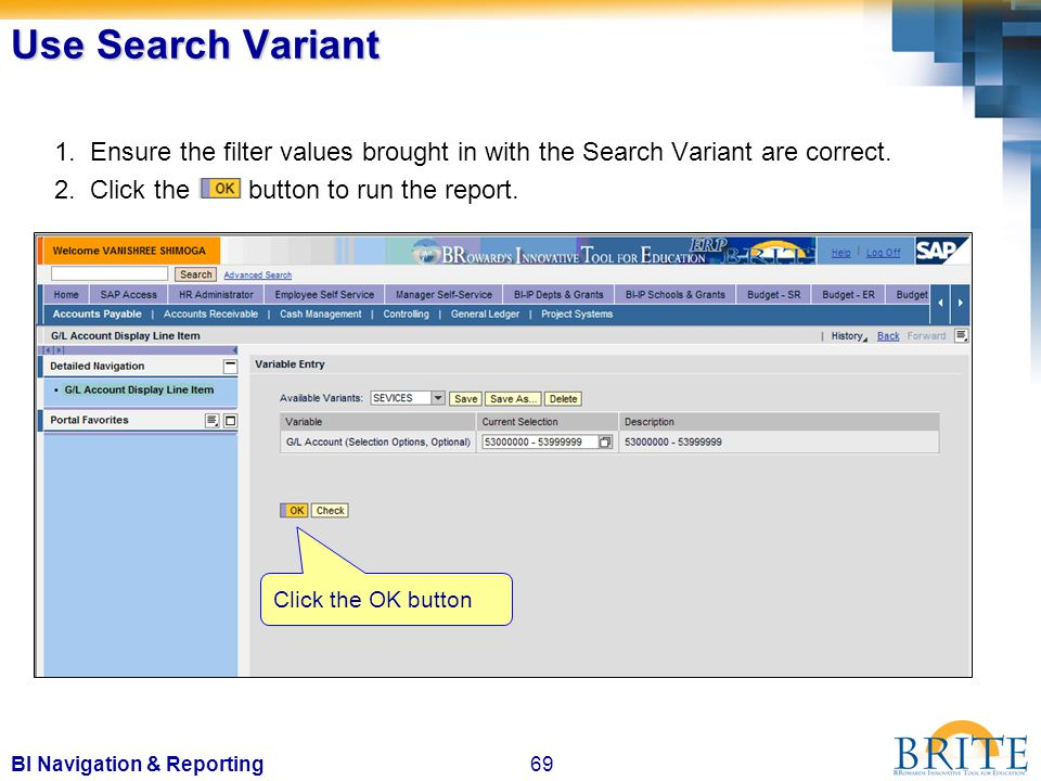 69BI Navigation & Reporting Use Search Variant 1.
