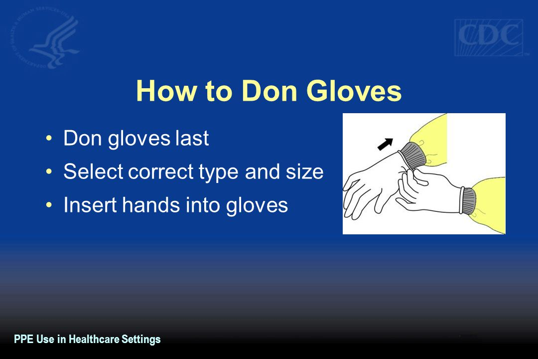 How to Don Gloves Don gloves last Select correct type and size Insert hands into gloves PPE Use in Healthcare Settings