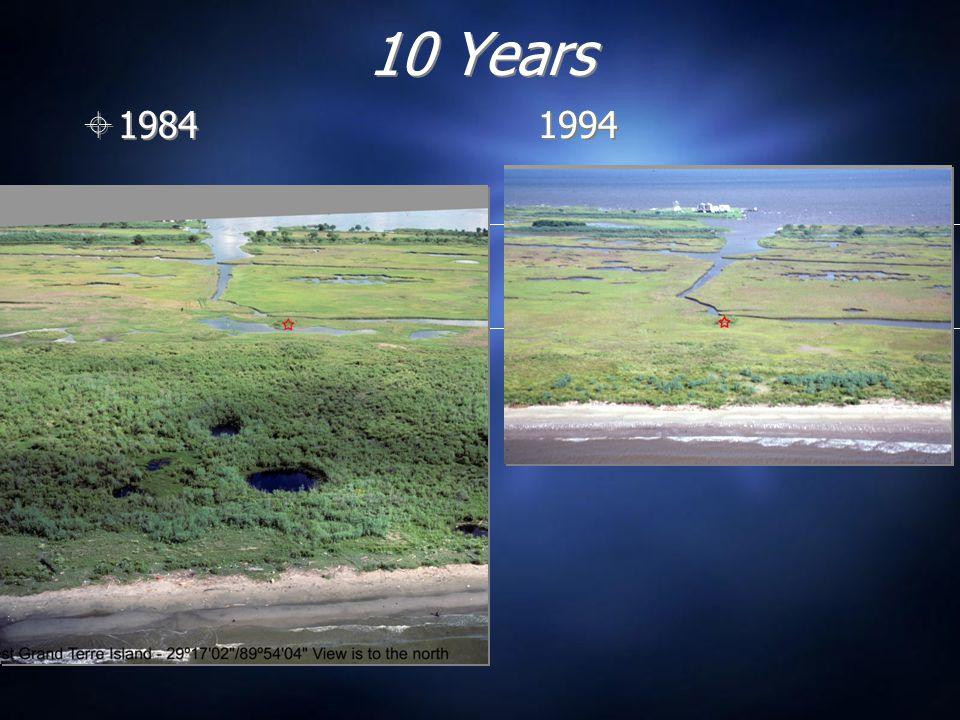 10 Years  1984 1994