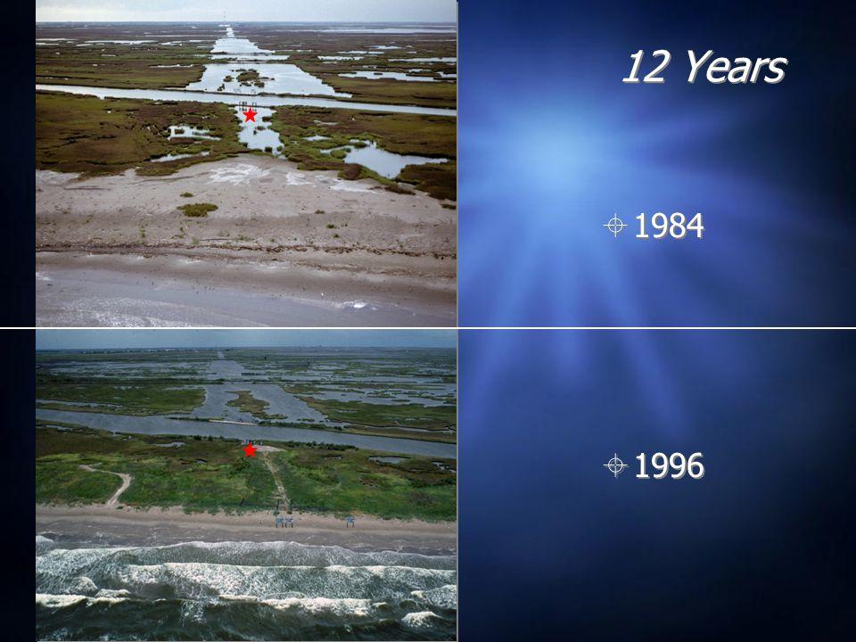 12 Years  1984  1996
