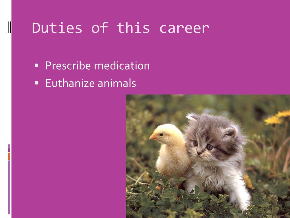 Duties of this career  Prescribe medication  Euthanize animals