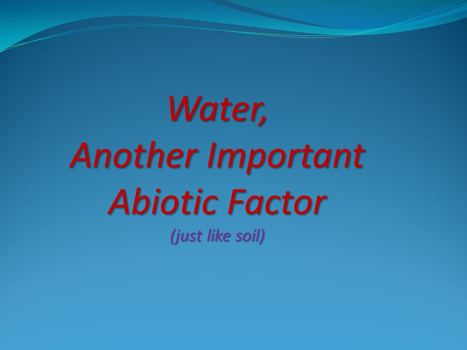 Remember the Water Cycle?