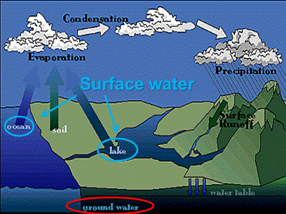 Delta - a landform where the mouth of a river flows into an ocean, sea, desert, estuary or lake.