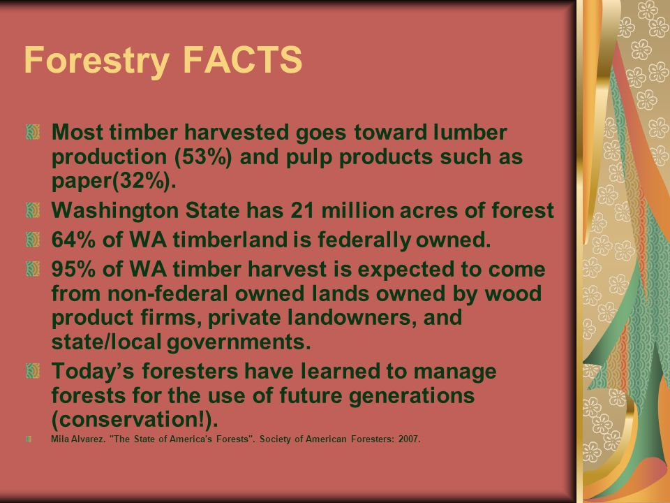 Forestry FACTS Most timber harvested goes toward lumber production (53%) and pulp products such as paper(32%).