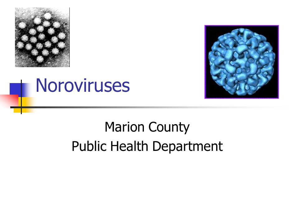 Noroviruses Marion County Public Health Department