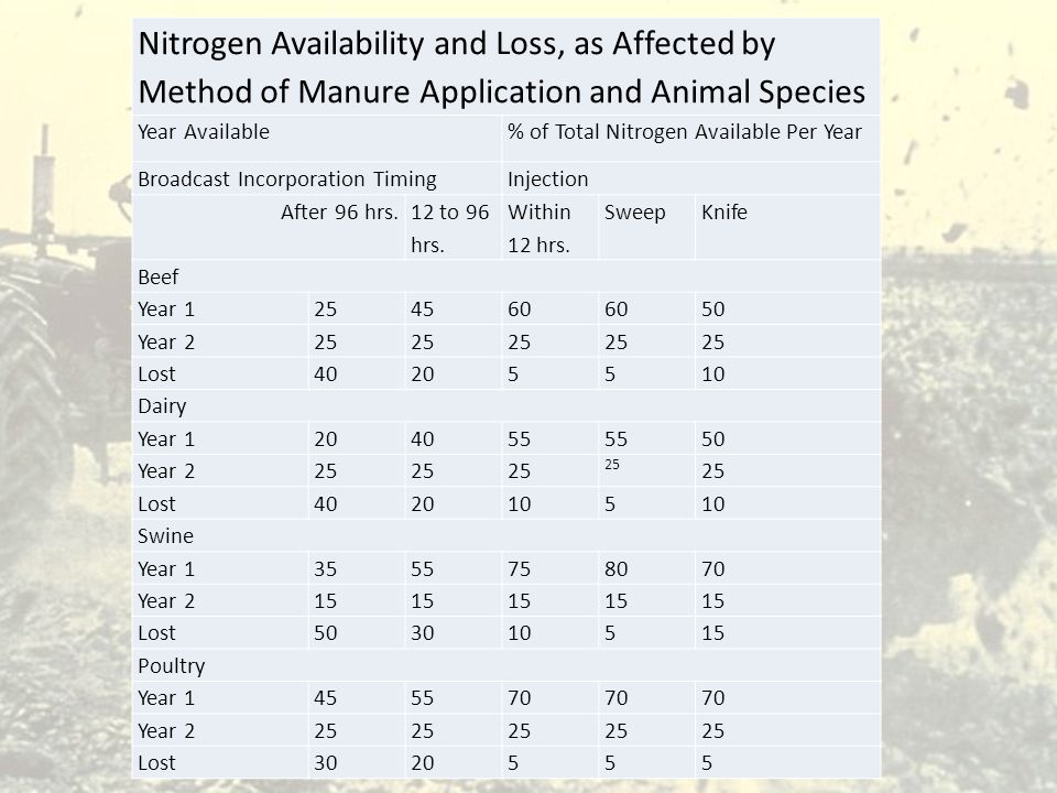 Nitrogen Availability and Loss, as Affected by Method of Manure Application and Animal Species Year Available% of Total Nitrogen Available Per Year Br