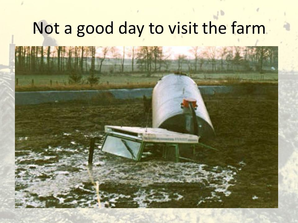 Not a good day to visit the farm