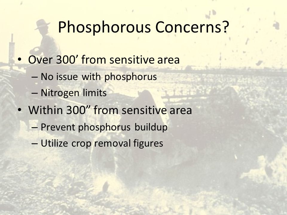 "Phosphorous Concerns? Over 300' from sensitive area – No issue with phosphorus – Nitrogen limits Within 300"" from sensitive area – Prevent phosphorus"