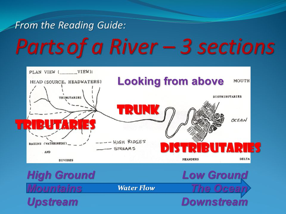 From the Reading Guide: Parts of a River – 3 sections Looking from above Tributaries trunk Distributaries Water Flow High Ground MountainsUpstream Low