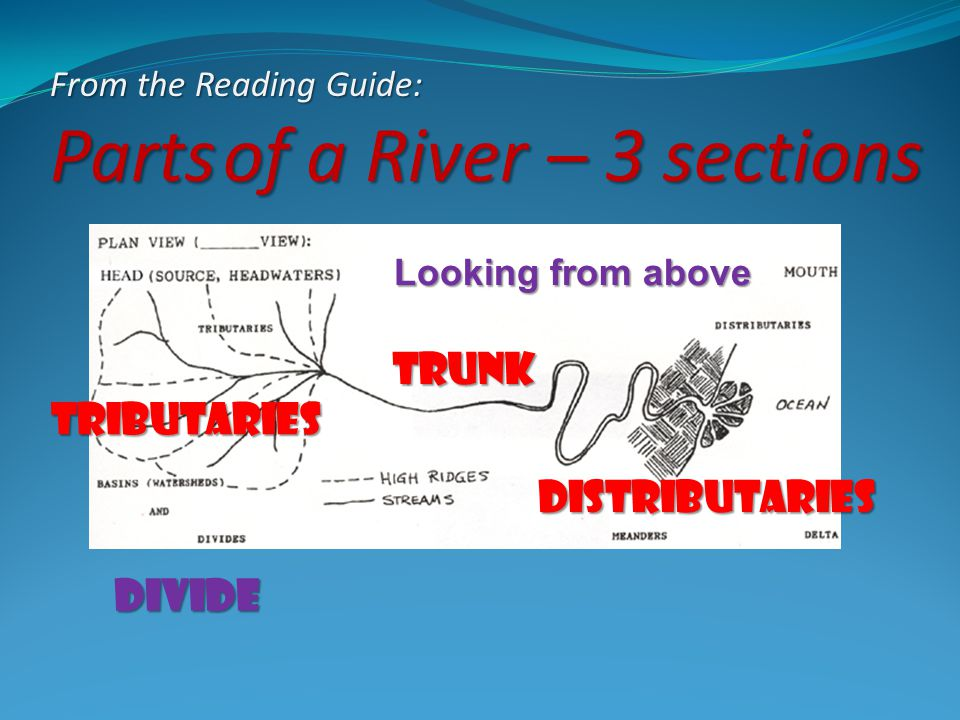 From the Reading Guide: Parts of a River – 3 sections Looking from above Tributaries trunk Distributaries Divide
