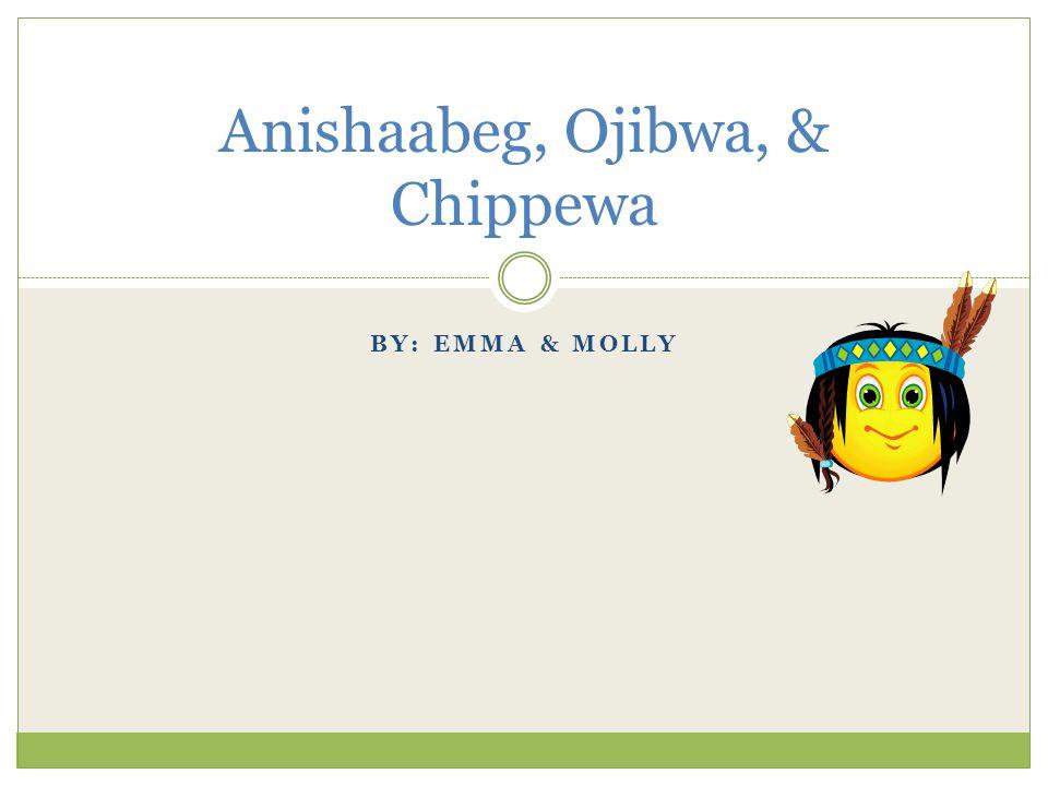 BY: EMMA & MOLLY Anishaabeg, Ojibwa, & Chippewa