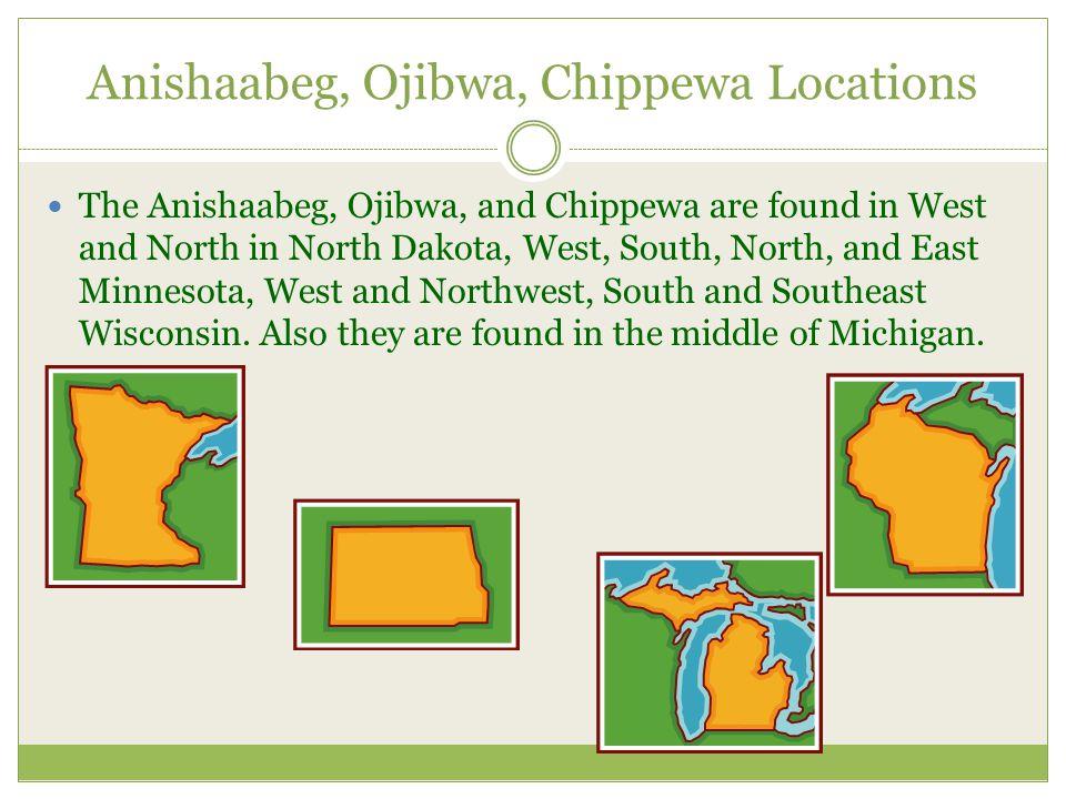 Anishaabeg, Ojibwa, Chippewa Locations The Anishaabeg, Ojibwa, and Chippewa are found in West and North in North Dakota, West, South, North, and East Minnesota, West and Northwest, South and Southeast Wisconsin.