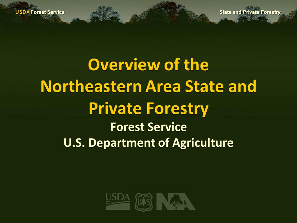 USDA Forest Service State and Private Forestry Introduction We work with a diverse group of partners to protect, conserve, and manage forests, community trees, and related resources.
