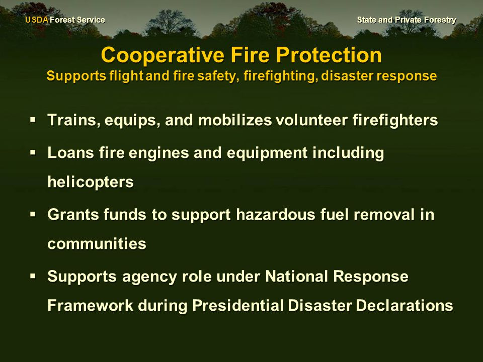 USDA Forest Service State and Private Forestry Cooperative Fire Protection Supports flight and fire safety, firefighting, disaster response  Trains, equips, and mobilizes volunteer firefighters  Loans fire engines and equipment including helicopters  Grants funds to support hazardous fuel removal in communities  Supports agency role under National Response Framework during Presidential Disaster Declarations  Trains, equips, and mobilizes volunteer firefighters  Loans fire engines and equipment including helicopters  Grants funds to support hazardous fuel removal in communities  Supports agency role under National Response Framework during Presidential Disaster Declarations