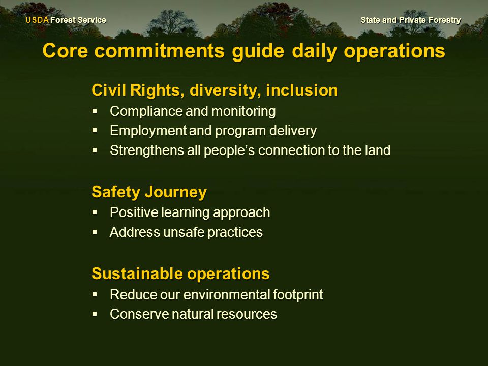 USDA Forest Service State and Private Forestry Core commitments guide daily operations Civil Rights, diversity, inclusion  Compliance and monitoring  Employment and program delivery  Strengthens all people's connection to the land Safety Journey  Positive learning approach  Address unsafe practices Sustainable operations  Reduce our environmental footprint  Conserve natural resources Civil Rights, diversity, inclusion  Compliance and monitoring  Employment and program delivery  Strengthens all people's connection to the land Safety Journey  Positive learning approach  Address unsafe practices Sustainable operations  Reduce our environmental footprint  Conserve natural resources