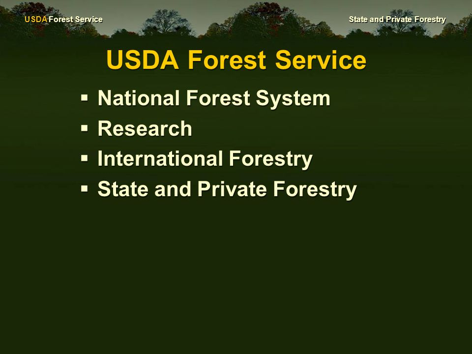 USDA Forest Service State and Private Forestry Forest Stewardship Works to sustain private forest land to achieve landowner objectives and provide public benefits  Provides GIS support to identify priority forest lands  Writes forest management plans for priority lands  Works with heirs to keep inherited forests as forest  Shares technical expertise and provides educational programs for forest landowners.
